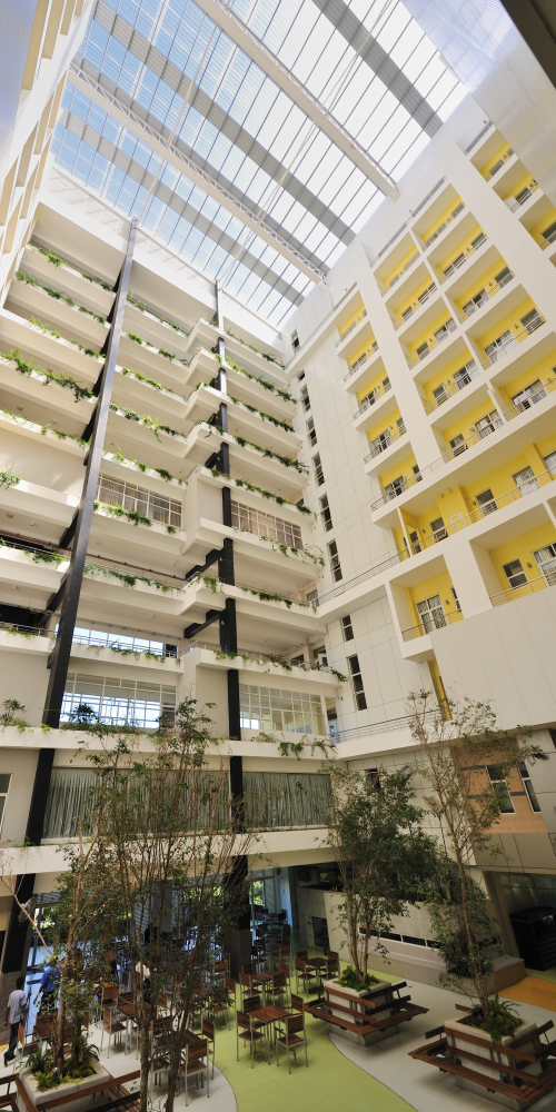 Healthcare – Central Hospital