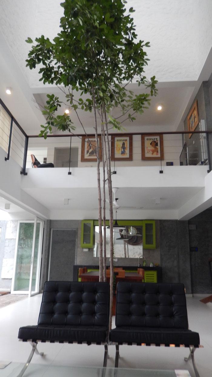 Randeniya House